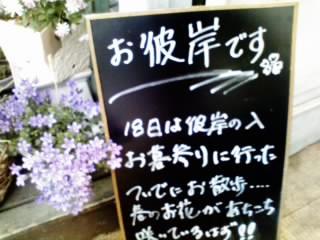 10-03-16_001.jpg